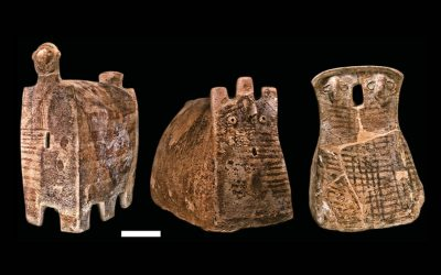 6,500-Year-Old DNA Points to Ancient Migration