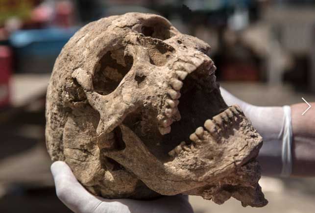 Philistine Cemetery Unearthed at Ashkelon